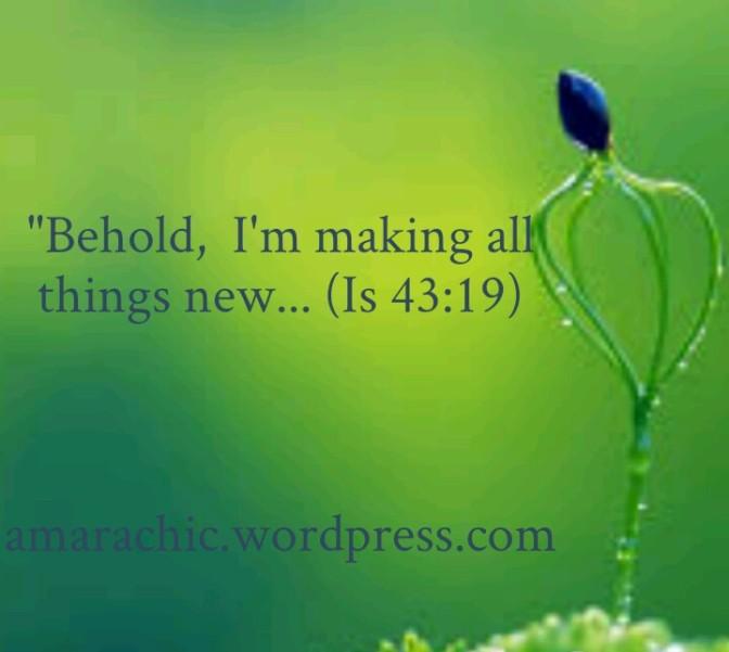 New Beginnings (2)